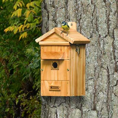 Bird Camera Nest Box