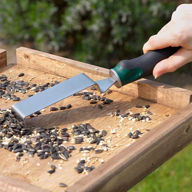 Bird Table Scraper