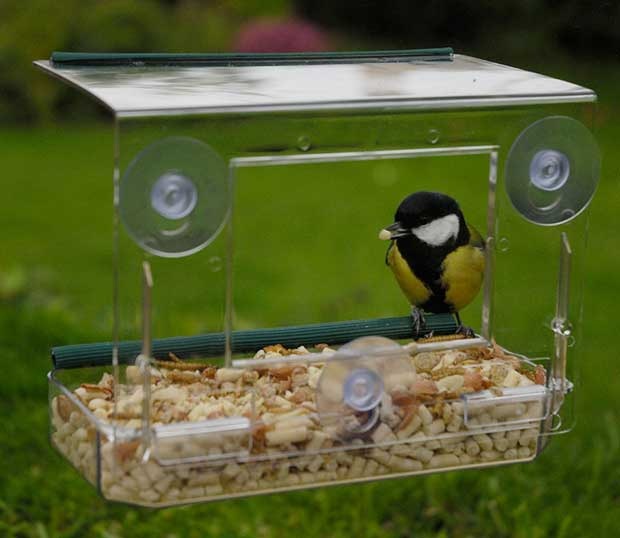 Window Bird Feeders British Bird Lovers