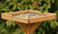 Choosing A Bird Table