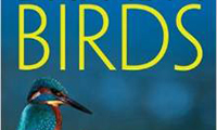Bird Identification Books