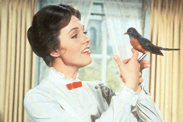 Mary Poppins With An American Robin