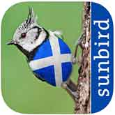 All Birds Scotland Complete Guide iPhone/iPad App