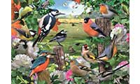 Birds For All Seasons Jigsaw Puzzle