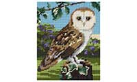 Owl Tapestry Kit