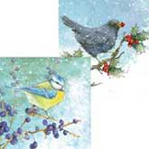 RSPB Berries And Birds Duo Christmas Cards