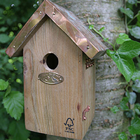 Copper Roofed Bird House