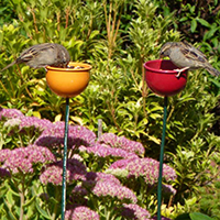 Flower Bed Bird Feeders