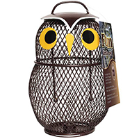 Little Owl Bird Feeder