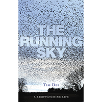 The Running Sky - A Bird Watching Life