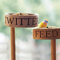 Twitter Feed Bird Feeder
