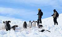 Polar Expedition